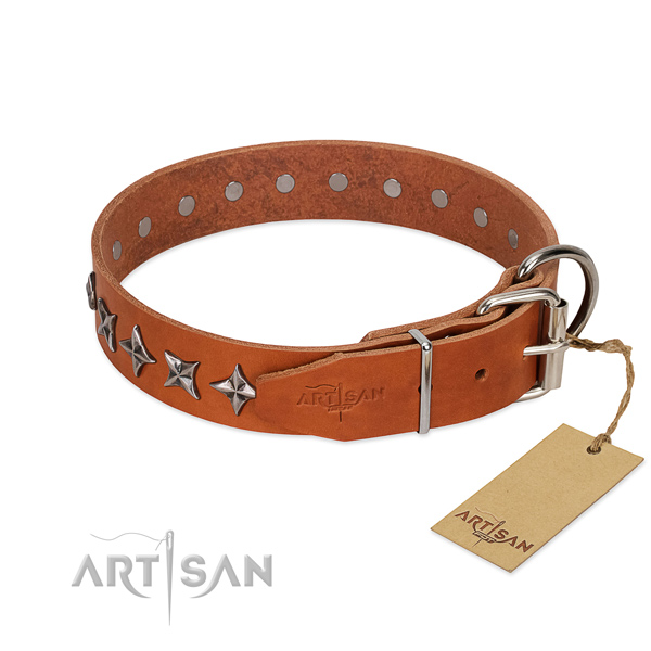 Comfortable wearing studded dog collar of durable full grain leather