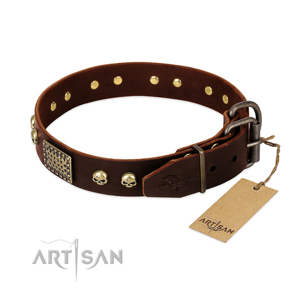 Reliable traditional buckle on basic training dog collar
