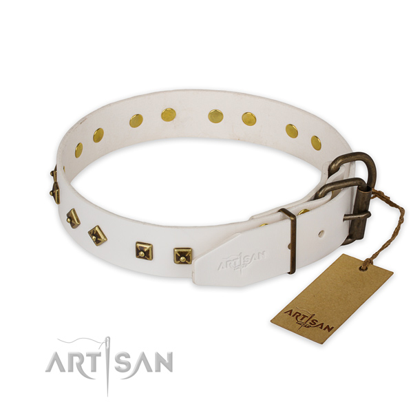 Corrosion resistant fittings on full grain genuine leather collar for walking your doggie