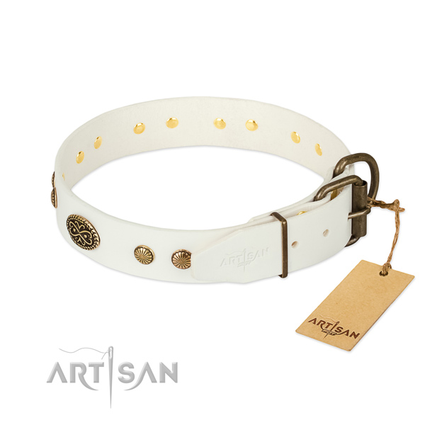 Reliable embellishments on natural leather dog collar for your dog