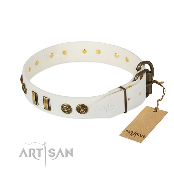 Rust-proof studs on full grain genuine leather dog collar for your canine