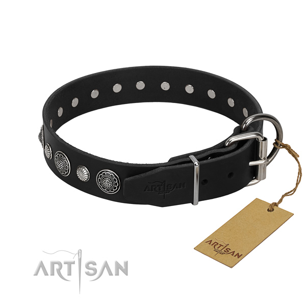 Quality genuine leather dog collar with incredible embellishments