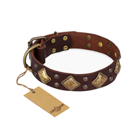 """Golden Square"" FDT Artisan Brown Leather Pitbull Collar with Large Squares"