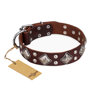 """King of Grace"" FDT Artisan Stylish Leather Pitbull Collar with Old Silver-Like Plated Decorations"