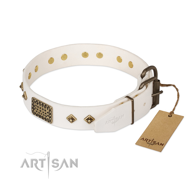 Full grain natural leather dog collar with strong hardware and embellishments