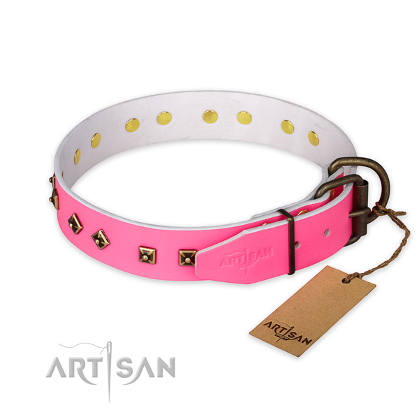 Corrosion proof fittings on natural leather collar for stylish walking your doggie