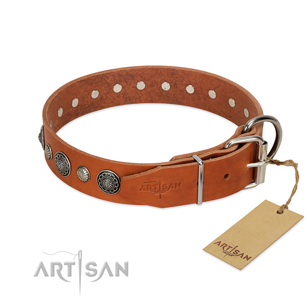 Strong full grain leather dog collar with rust resistant traditional buckle