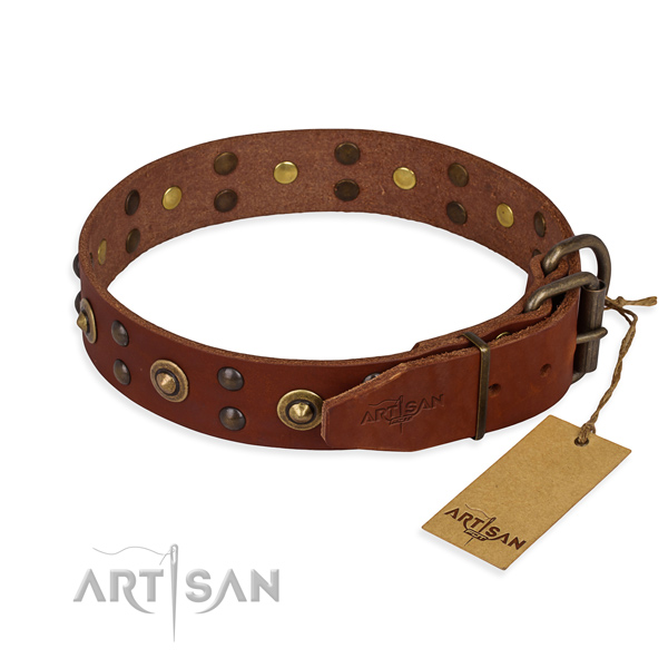 Durable traditional buckle on genuine leather collar for your stylish pet