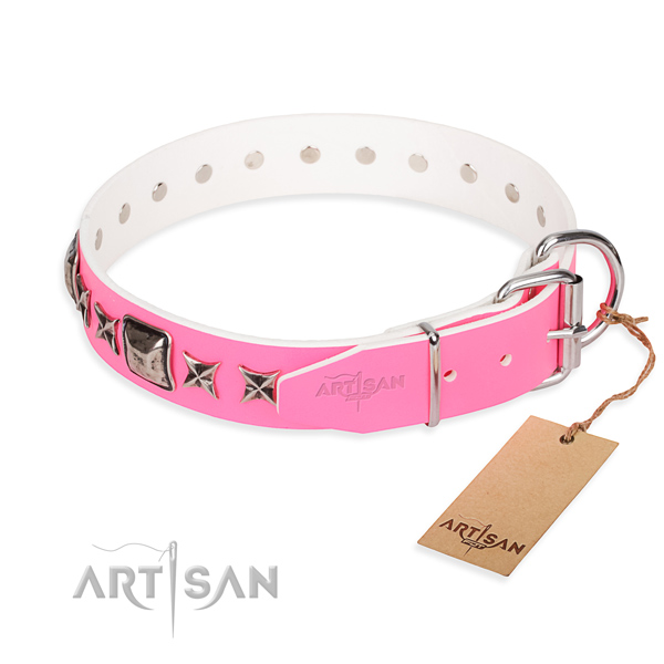 Reliable decorated dog collar of leather