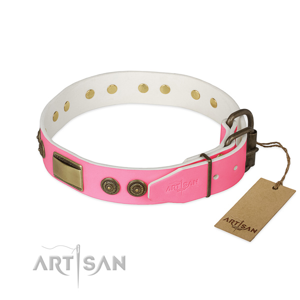 Rust-proof fittings on walking dog collar