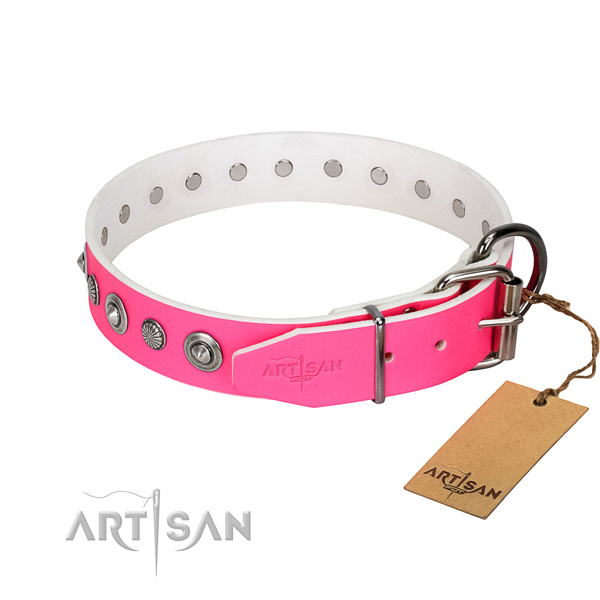 Top notch natural leather dog collar with stunning embellishments