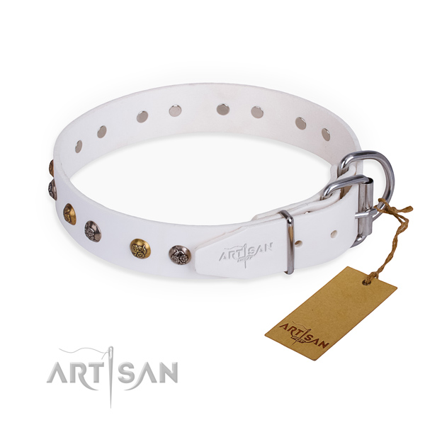 Leather dog collar with awesome corrosion proof studs