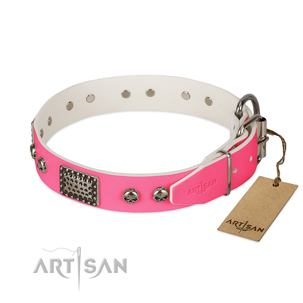 Strong traditional buckle on daily walking dog collar