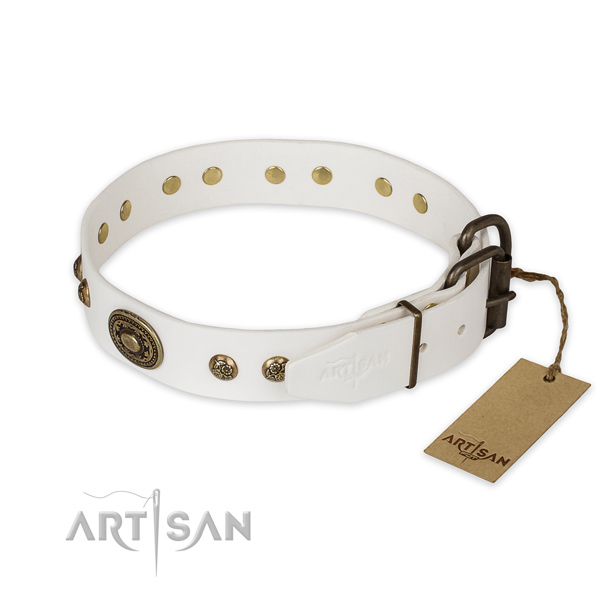 Durable D-ring on natural genuine leather collar for basic training your pet