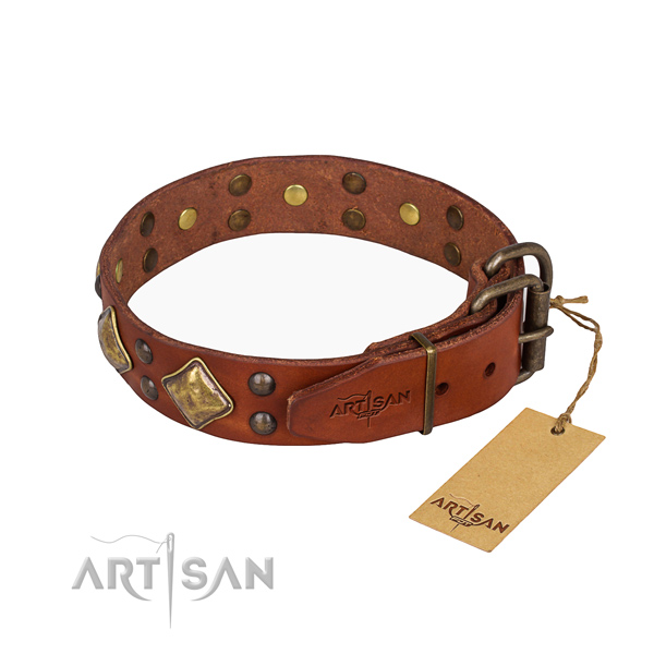 Genuine leather dog collar with significant durable studs