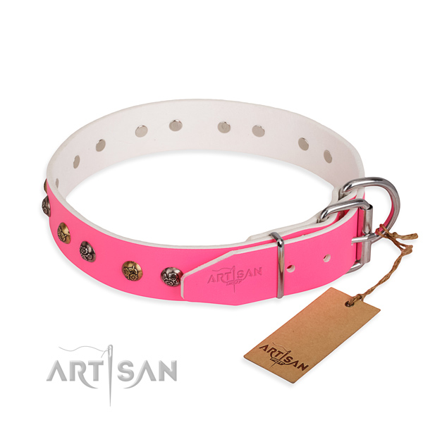 Natural leather dog collar with unusual reliable studs