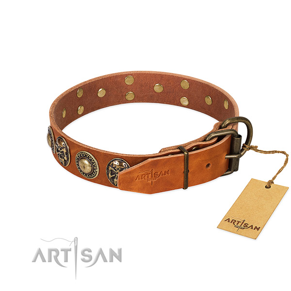 Rust resistant buckle on comfy wearing dog collar