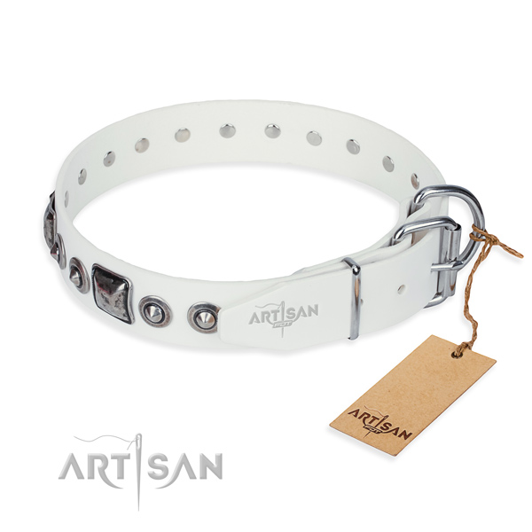 Strong full grain leather dog collar made for daily use