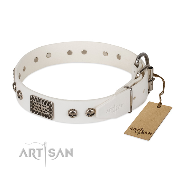 Corrosion resistant buckle on comfortable wearing dog collar