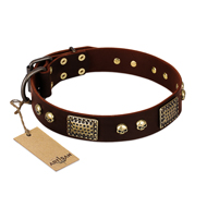 """Magic Amulet"" Brown Leather Pitbull Collar with Skulls and Plates"