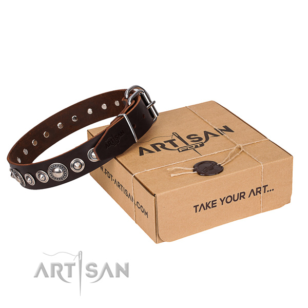 Full grain leather dog collar made of reliable material with durable traditional buckle