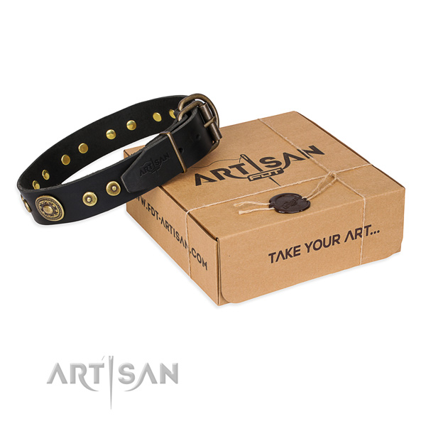 Full grain leather dog collar made of soft to touch material with corrosion resistant traditional buckle
