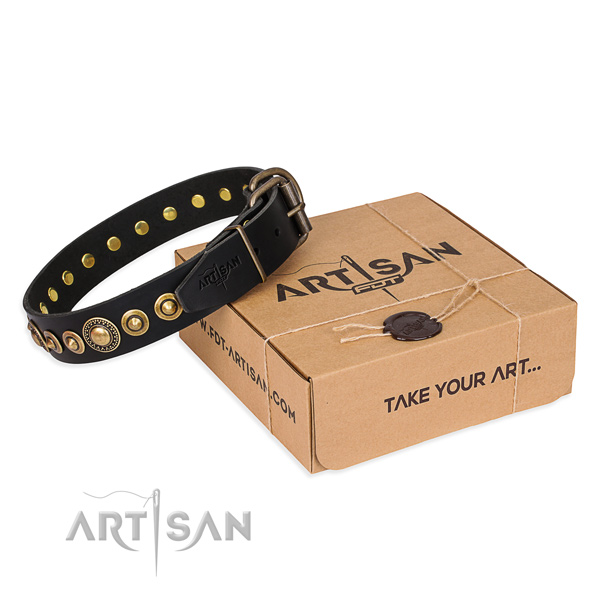 Reliable full grain natural leather dog collar handcrafted for basic training