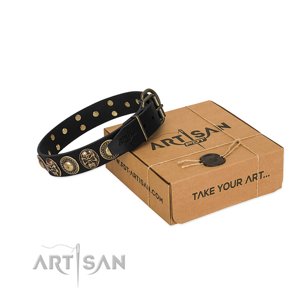 Durable traditional buckle on dog collar for comfortable wearing