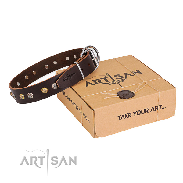 Quality full grain genuine leather dog collar created for everyday walking