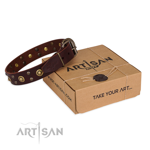 Rust resistant buckle on genuine leather collar for your impressive four-legged friend