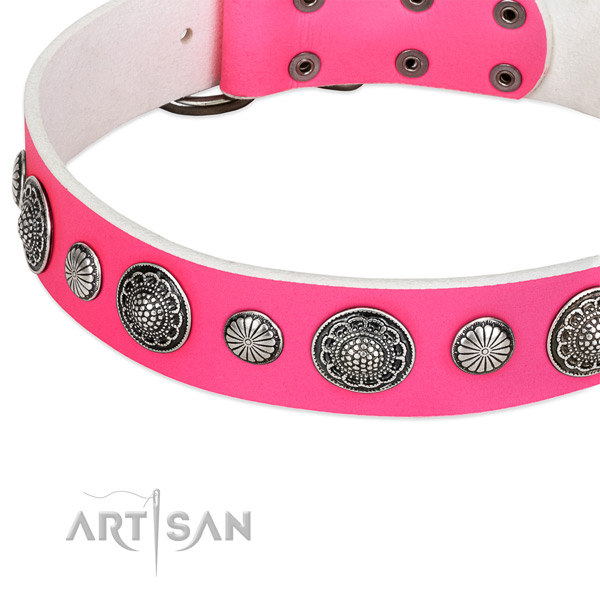 Full grain genuine leather collar with corrosion resistant fittings for your beautiful canine