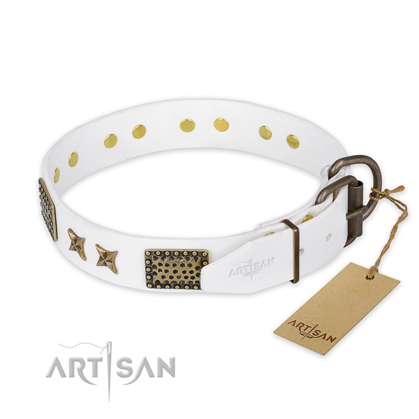 Corrosion proof fittings on leather collar for your stylish dog