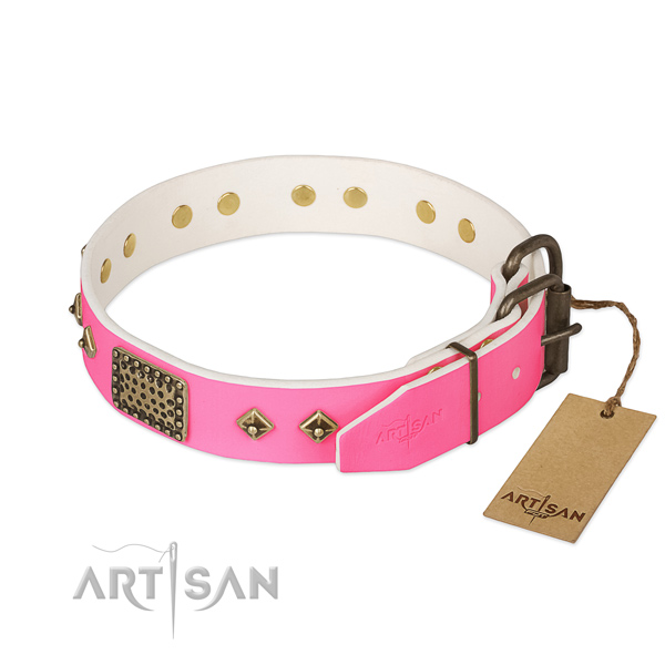 Corrosion proof D-ring on daily use dog collar