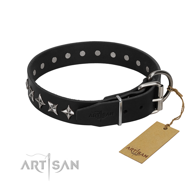 Daily walking adorned dog collar of top quality full grain genuine leather