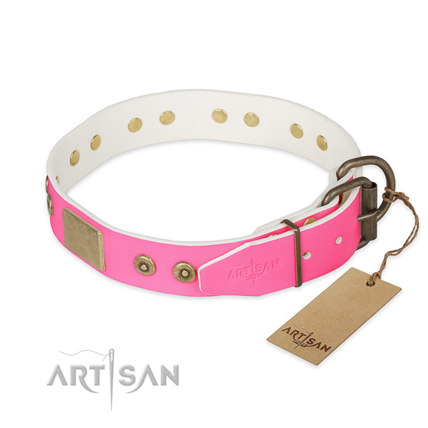 Corrosion proof studs on handy use dog collar
