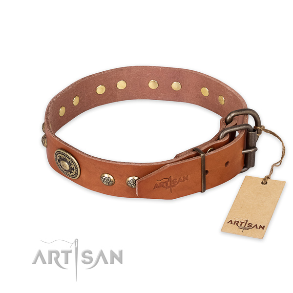 Strong hardware on leather collar for walking your pet