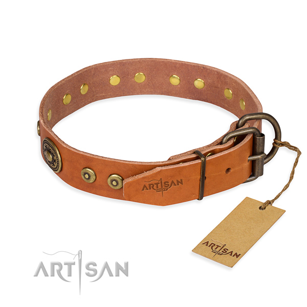 Full grain leather dog collar made of reliable material with rust-proof decorations