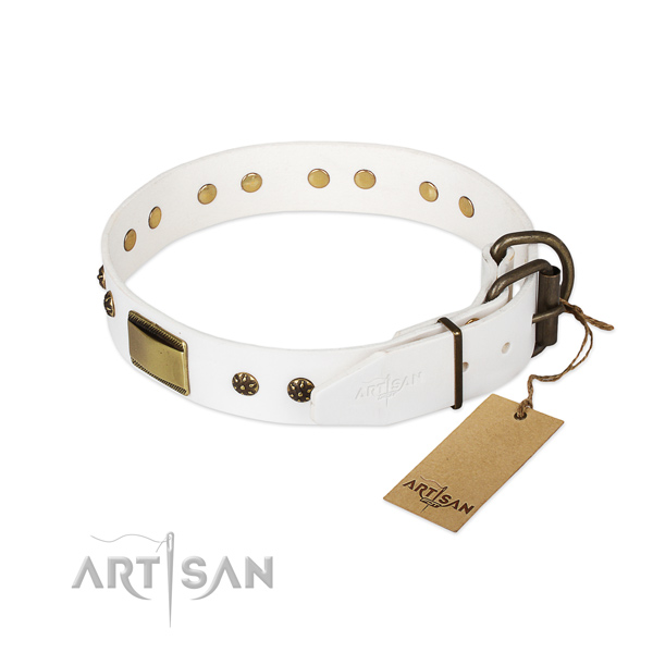 Full grain genuine leather dog collar with durable fittings and adornments