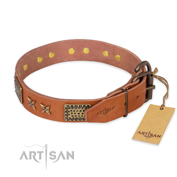 Corrosion proof fittings on full grain leather collar for your impressive four-legged friend