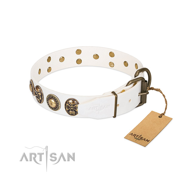 Reliable studs on walking dog collar