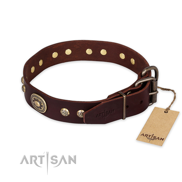 Rust resistant traditional buckle on full grain natural leather collar for walking your four-legged friend