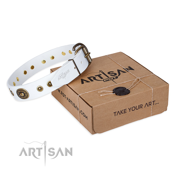 Full grain genuine leather dog collar made of best quality material with corrosion resistant fittings