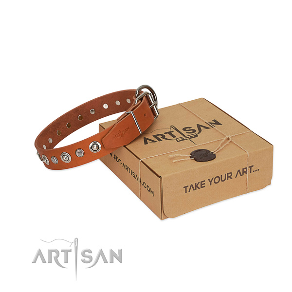 Top notch genuine leather dog collar with stylish embellishments