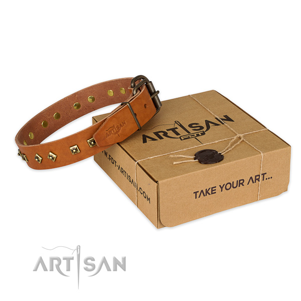Durable fittings on full grain natural leather dog collar for daily walking