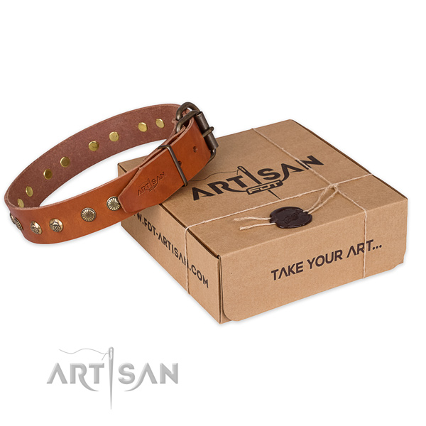 Corrosion proof traditional buckle on leather collar for your stylish doggie