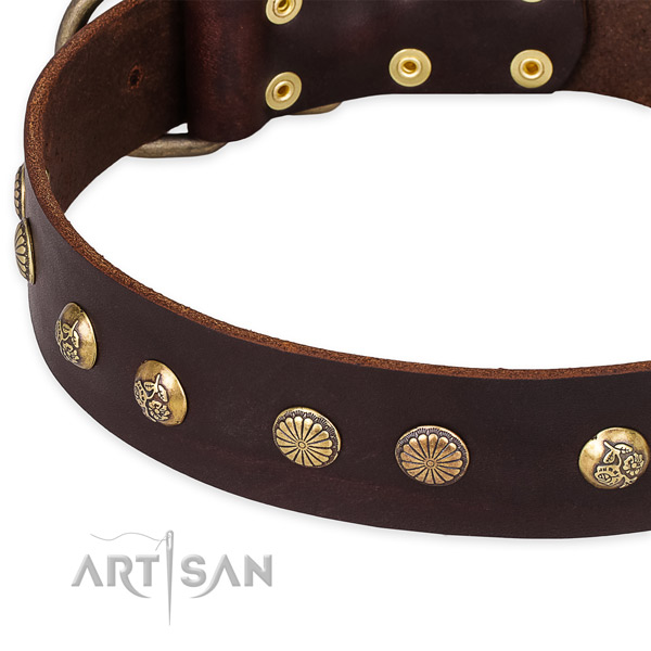 Full grain natural leather collar with reliable fittings for your beautiful four-legged friend