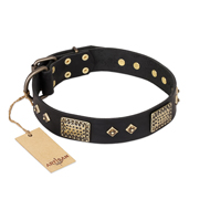 """Jewel Passion"" FDT Artisan Fashionable Black Leather Pitbull Collar"