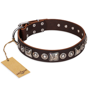 """Pierian spring"" FDT Artisan Brown Leather Pitbull Collar with Silvery Decorations"