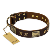 """Sparkling Bronze"" FDT Artisan Genuine Leather Pitbull Collar with Bronze Look Stars and Plates"