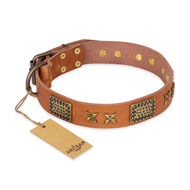 """Cosmic Traveller"" FDT Artisan Adorned Leather Pitbull Collar with Old Bronze-Plated Stars and Plates"